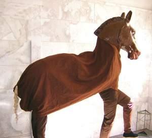 pferd kost m f r zwei personen. Black Bedroom Furniture Sets. Home Design Ideas
